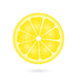Lemon icon on a white vector image