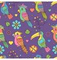 tropical birds vector image