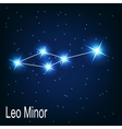 The constellation Leo Minor star in the night sky vector image