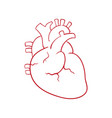 human heart draw vector image