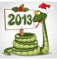 Christmas Snake vector image