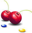 cherries and candy vector image