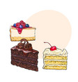 hand drawn desserts - pieces of cheesecake and vector image