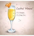 Cocktail alcohol Mimosa vector image