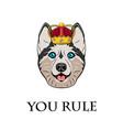 husky in crown vector image