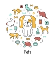 Pets Line Art Thin Icons Set with Dog Cat vector image