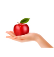 Red ripe apple in a hand Concept of diet vector image