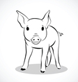 pig 2 vector image