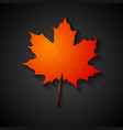 Red maple leaf Autumn background vector image