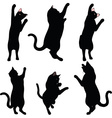 cat silhouette in Reach pose vector image