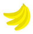 banana icon branch set healthy food lifestyle vector image