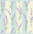 seamless pattern of lavender flower vector image