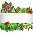 Tropical flowers and leaves over white vector image