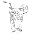 Soda glass with citrus segment and ice cubes vector image vector image