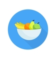Different fruits in bowl vector image