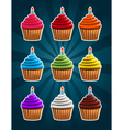 Birthday Cupcakes vector image