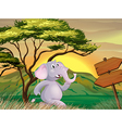 An elephant following the arrow signboards vector image vector image