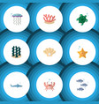 flat icon sea set of cancer medusa tuna and vector image