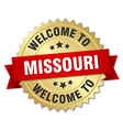 Missouri 3d gold badge with red ribbon vector image