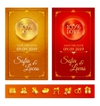 Collection of invitation and wedding symbols vector image