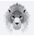 Gray low poly lion vector image
