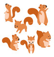 set of cute squirrels set of cute squirrels vector image