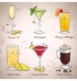 New Era Drinks Cocktail Set vector image
