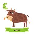Cow C letter Cute children animal alphabet in vector image
