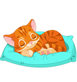 Sleeping kitten vector image vector image