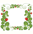 Strawberry floral frame vector image vector image