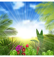 Beautiful tropical background vector image