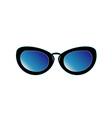 Vintage eyewear for gents vector image