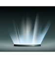 Rays of light Hologram vector image