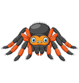 Cartoon spider tarantula with red knees vector image