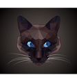 Dark cat with blue eyes - polygonal style vector image
