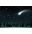 comet falls over the night wood vector image vector image