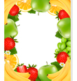 Frame made of fresh juicy fruit vector image vector image