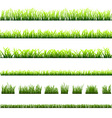 Collection of different types of green grass vector image vector image