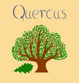 flat stylish background plant quercus vector image