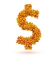 Dollar sign of autumn fall bright leaves vector image vector image