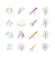 Color fireworks set vector image