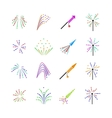 Color fireworks set vector image