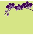 Stylized orchid branch on color background vector image
