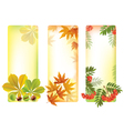 Vertical autumn banners vector image