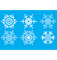 snowflakes the crystal form vector image vector image