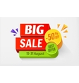 Big sale special offer bright colourful banner vector image