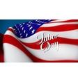 United Sates of America flag vector image