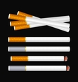 Cigarette on black vector image