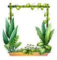 Green plants vector image vector image