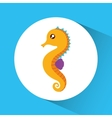 Sea horse cartoon over circle icon graphic vector image